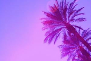 pinkpalmtreesparadisePS